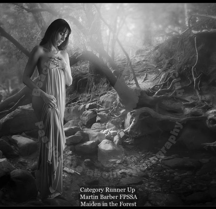 e003-1020360-maiden in the forest.jpg_human portrait - monochrome_502_category runner up